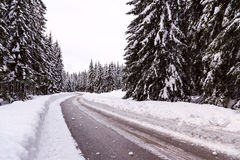 Snowy winter road Stock Images