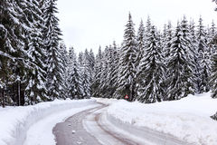 Snowy winter road Stock Photography