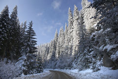 Snowy Winter Road in the Mountain stock image
