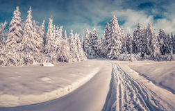 Snowy winter road in the mountain road. Stock Photography
