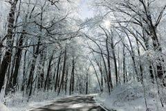 Snowy Winter Road Scene Stock Photos