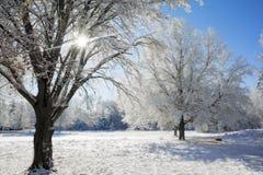 Snowy Winter Scene Stock Photo