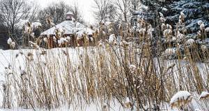 Snowy Winter scene stock photos