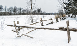 Snowy Winter scene cedar fence. With trees on a snowyn day Royalty Free Stock Images