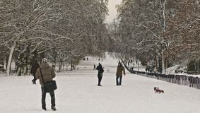 Hyde park snow. A snowy winter scene from londons hyde park Stock Photo
