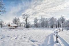 Snowy Winter Scene Stock Image