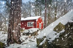 Snowy winter scenery with red wooden house. In the forest, Sweden Stock Image