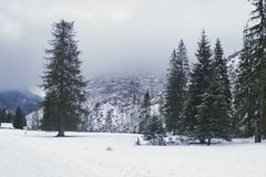 Snowy winter in the Tatras royalty free stock photography