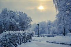 Snowy Winter Royalty Free Stock Photos
