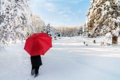 Snowy Winter Walk Royalty Free Stock Photography