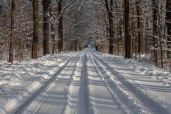 Snowy-winterpath Lizenzfreie Stockbilder