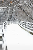 Snowy-Winterpfad Stockbild