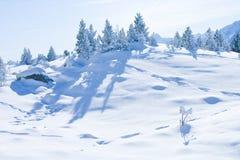 Snowy wonderland Royalty Free Stock Image