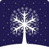 Snowy wood. Magic, Christmas tree creates the snow Stock Photography