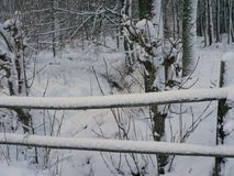Snowy Wood Fence Royalty Free Stock Images