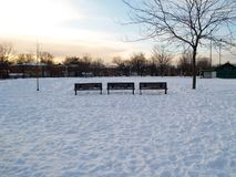 Snowy wooden benches in a park in Montreal royalty free stock images