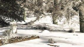 Snowy Woodland Glade Stock Photo