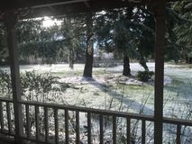 Snowy yard. Yard dusted with snow glitering in Royalty Free Stock Photo