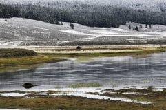 Snowy Yellowstone Lizenzfreie Stockfotografie
