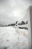 Snowy-Zaun Lizenzfreies Stockfoto