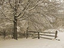 Snowy-Zaun Lizenzfreie Stockbilder