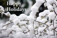 Snowy-Zeit mit frohe Feiertage Textnachricht Stockfotografie