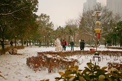 Zhengzhou people& x27;s Park. Snowy, Zhengzhou people& x27;s Park is wrapped in silver and enchanting Royalty Free Stock Photos