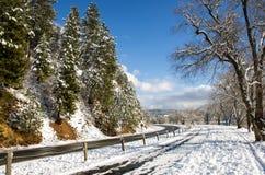 Snowyroad Fotografia Stock