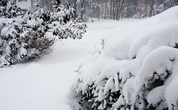 The snowzilla Jonas blizzard snow winter storm on January 23, 2016 Royalty Free Stock Images