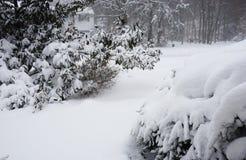 The snowzilla Jonas blizzard snow winter storm on January 23, 2016 Royalty Free Stock Photography