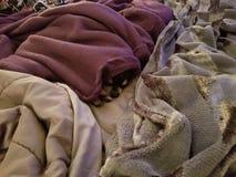 SNUGGLE PUPPY- grumpy girl! stock photos