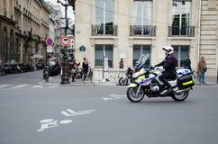 Snut som patrullerar ledaren royaltyfria bilder