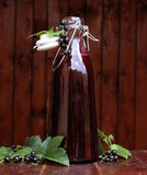 Soße der Schwarzen Johannisbeere Lizenzfreies Stockfoto