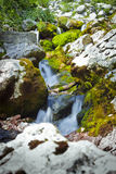 SoÄ  ένας ποταμός σε Slovenija Στοκ φωτογραφίες με δικαίωμα ελεύθερης χρήσης