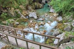  a SoÄ реки на ущелье Tolmin, Словении Стоковое Изображение