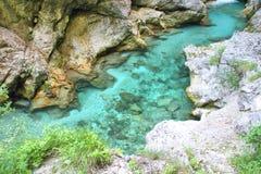  a SoÄ реки на ущелье Tolmin, Словении Стоковое Фото
