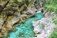  a SoÄ реки на ущелье Tolmin, Словении Стоковые Фото