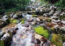 SoÄ  a lub Isonzo rzeka blisko swój wiosen, Bovec teren, Slovenia zdjęcie stock