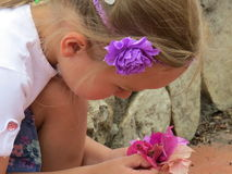 Soñador sonriente hermoso de la muchacha Imagen de archivo