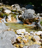 Soča river just after emerging from a spring Stock Photos