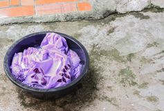 Soak dirty clothes in the basin black for cleanse Stock Photography