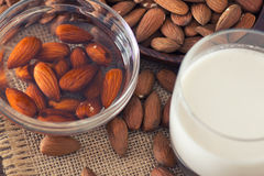 Soaked almonds and  almond milk Stock Photography