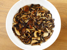 Soaked Dried Mushrooms Royalty Free Stock Photos