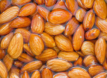 Soaked raw almonds nuts in water Royalty Free Stock Photography