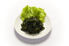 Soaked wakame seaweed Stock Photo