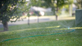 Soaker Hose. S  have become a more efficient option and are less wasteful than conventional sprinklers Royalty Free Stock Images