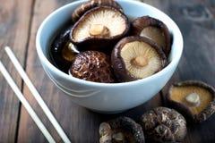 Soaking dried mushrooms shiitake rehydrate. Rehydrated dried shiitake mushrooms asian ingredient Stock Photos