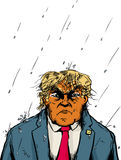 Soaking Wet Orange Trump in Rain Stock Image