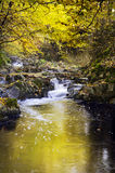 Soananrivier in de herfstseizoen, Beaujolais, Frankrijk Royalty-vrije Stock Afbeelding