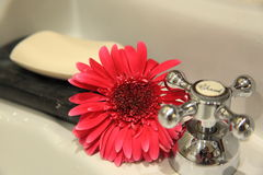 Soap. And  flower with cosmetic in background Royalty Free Stock Photos